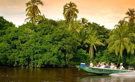 Destination Spotlight: Tortuguero