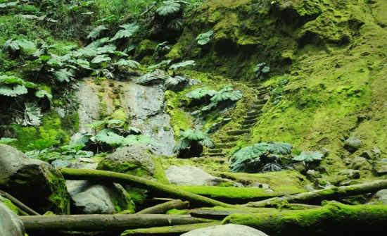 5 COSTA RICA WATERFALLS YOU MUST VISIT