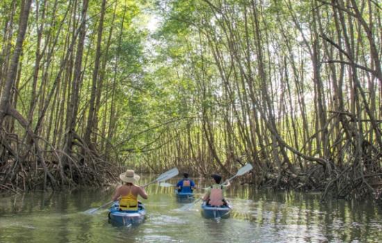7 TOP COSTA RICA KAYAKING EXCURSIONS