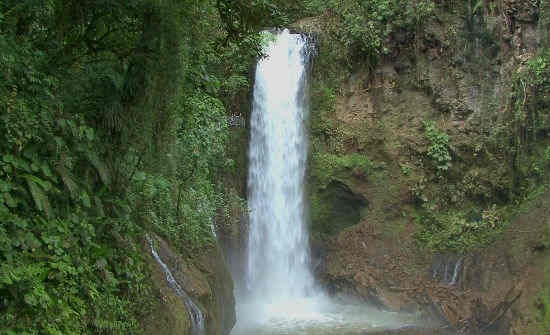 TOP 4 COSTA RICA CLOUD FORESTS