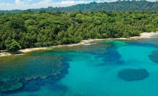 Gandoca Manzanillo Wildlife Refuge Snorkeling, Costa Rica