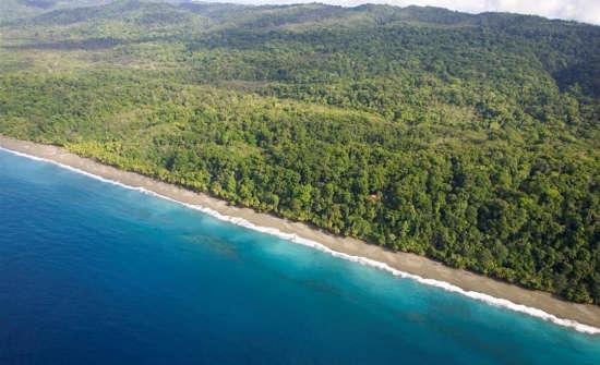 Best Jungle and Mangrove Tours in Costa Rica