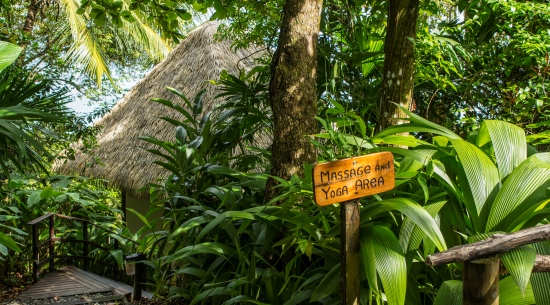 Digital Detox Destinations in Costa Rica