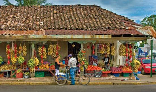 Top Costa Rica Gastro Tours for Foodies