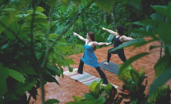 Samasati Nature Retreat & Rainforest Sanctuary