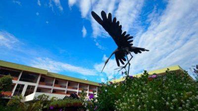 Hotel Bougainvillea Heredia