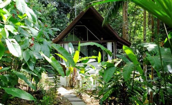 Stay at Oxygen Jungle Villas, Costa Rica