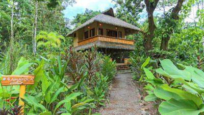 Copa de Arbol Rainforest Lodge, Costa Rica