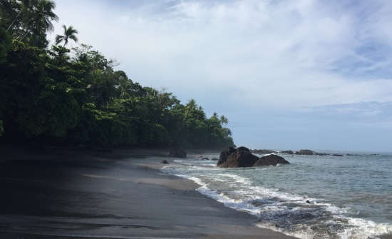 A Guide To Visiting Corcovado National Park
