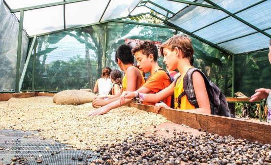 Costa Rica Family Vacation Ideas