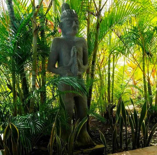 Adventure Meets Luxury in Costa Rica