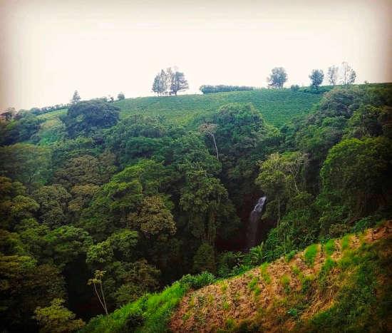 My 8-Day Luxury Adventure in Costa Rica