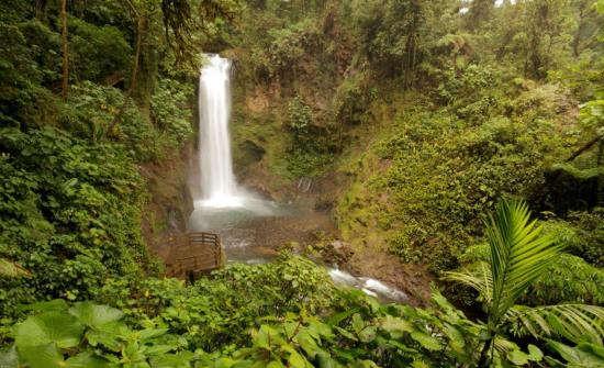Central Valley La Paz Waterfall Gardens