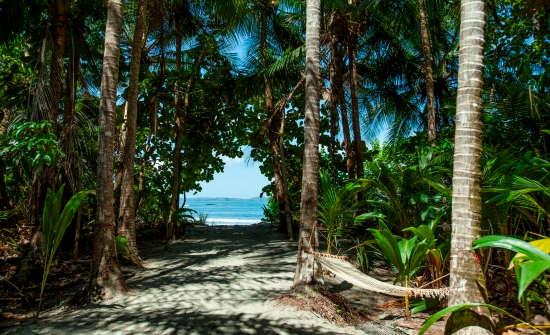Isla Palenque Bungalow Ocean View