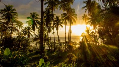 How to Travel Sustainably in Costa Rica