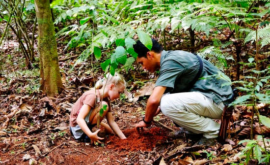 Treeplanting at Lapa Rios Ecolodge