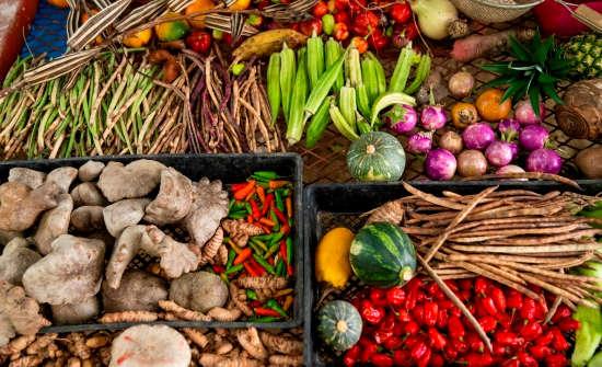 Produce from Orgins Lodge garden