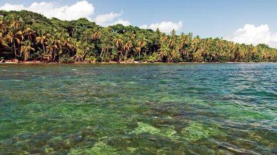 Cahuita National Park Guide