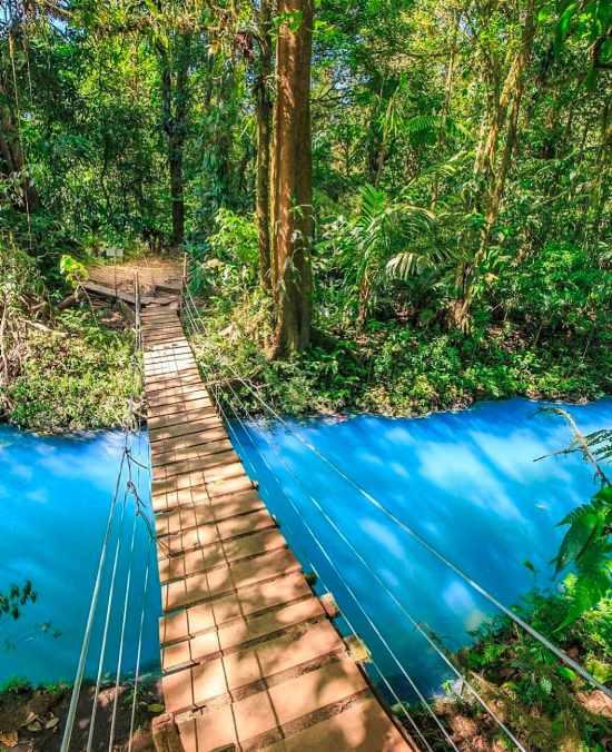 Rio Celeste Waterfall & Tenorio Volcano National Park Guide