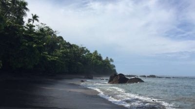 Corcovado National Park Full Day Tour