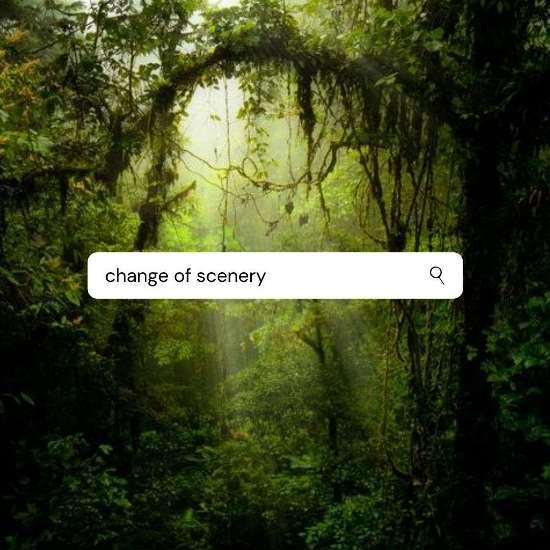 Change of Scenery Monteverde