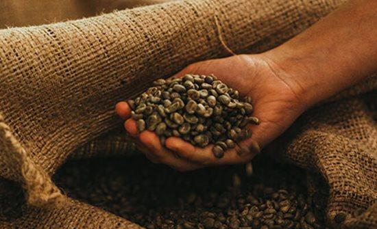 Buy Costa Rica Coffee