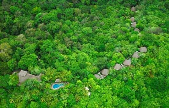 Lapa Rios Rainforest Ecolodge